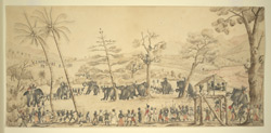Capturing elephants in Ceylon. c.1825.  Military officers supervising the rounding up of elephants